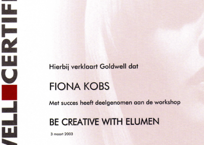 YPH Fiona Goldwell be creative with elumen